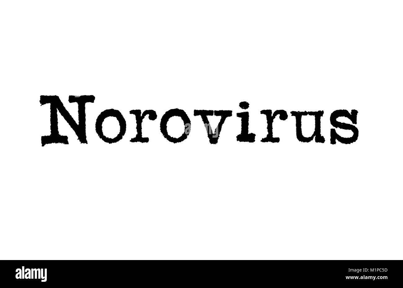 Das Wort Norovirus aus einer Schreibmaschine auf weißem Hintergrund Stockbild