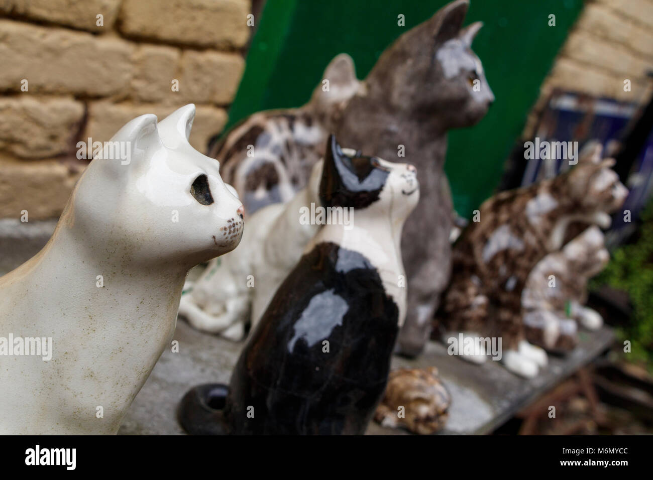 Eine Sammlung von winstanley Keramik Katzen im Freien angeordnet. North Walsham, Norfolk, Großbritannien. Stockbild