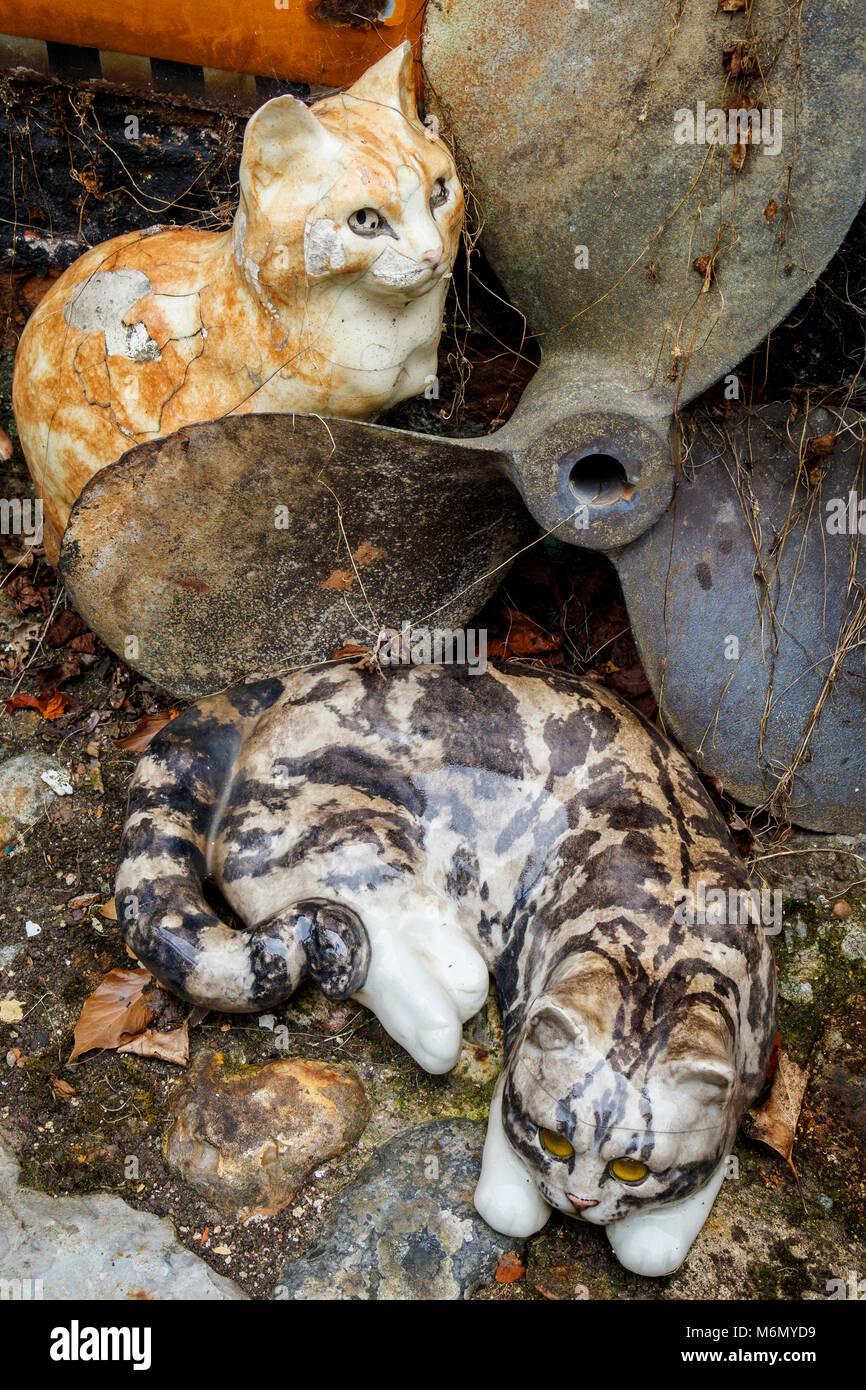 Eine Sammlung von winstanley Keramik Katzen und Kaninchen im Freien angeordnet. North Walsham, Norfolk, Großbritannien. Stockbild