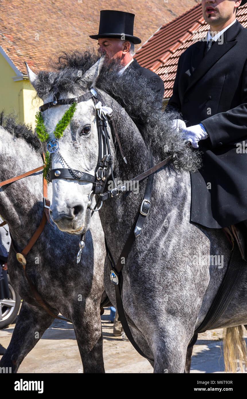 Sorbische Ostern Riders (osterreiter) und Zuschauer nehmen an der Ostern, Prozession in Radibor bei Bautzen, Oberlausitz, Stockbild