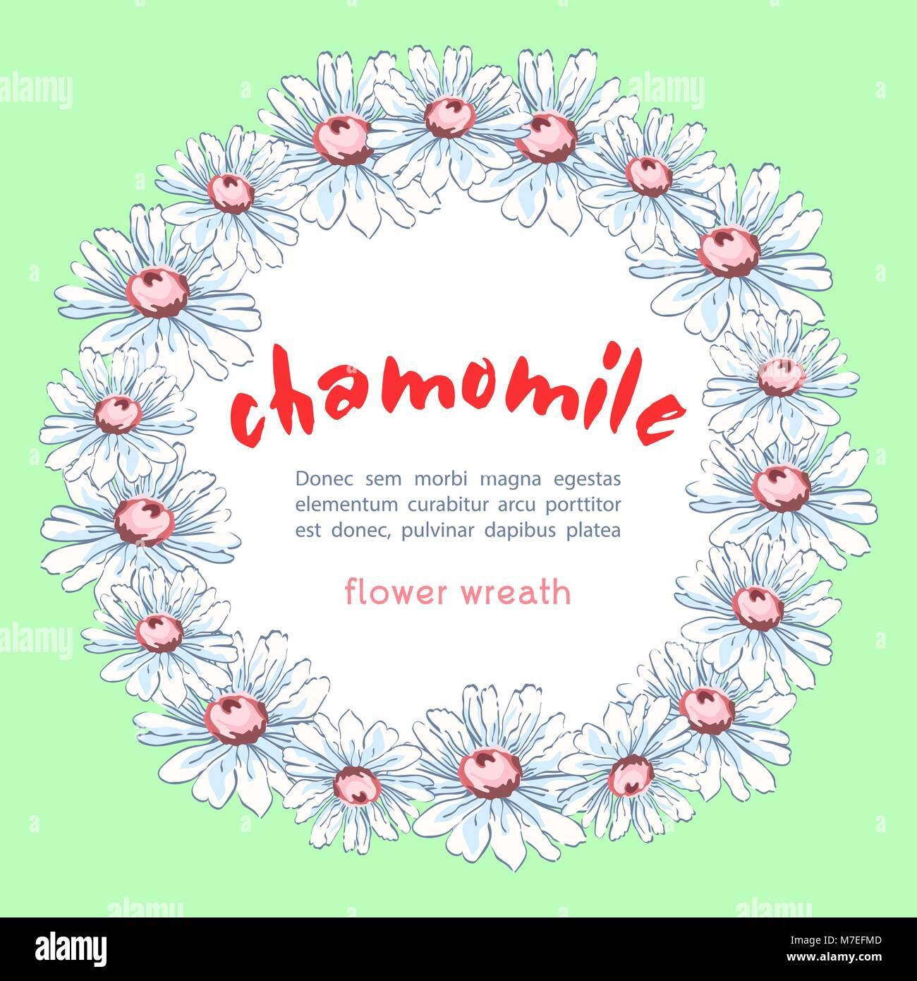 Kranz von kamillenblüten, Vektor floral background, runde Blume ...