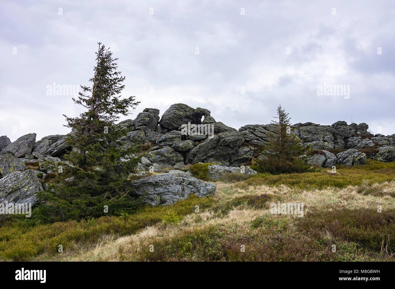 Felsformationen und Vegetation auf Großer Arber (Großer Arber), Bayerischer Wald, Bayern, Deutschland. Stockbild