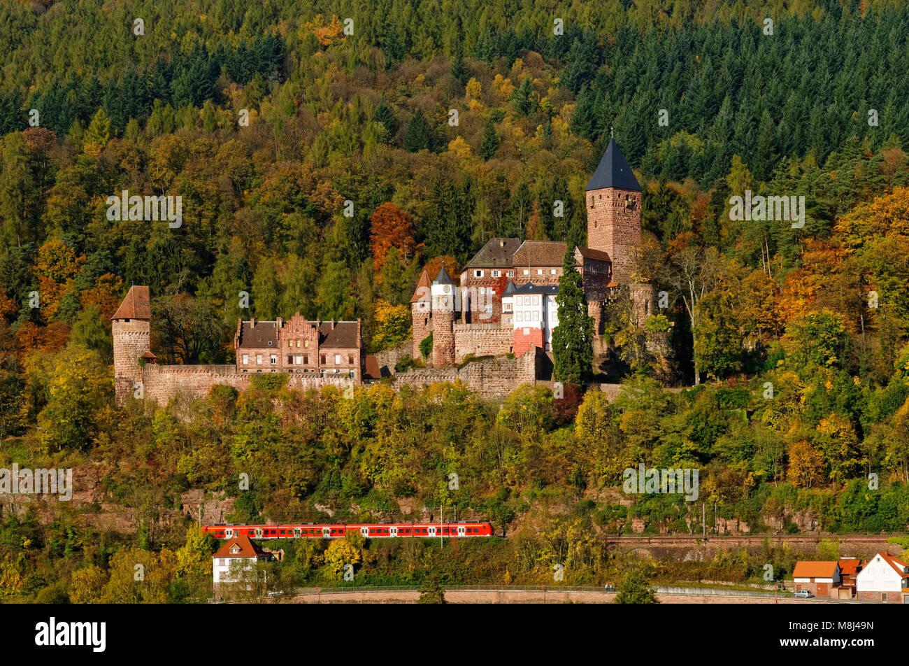 Schloss Zwingenberg und regionalen Zug über dem Neckartal, Baden-Württemberg, Deutschland Stockbild