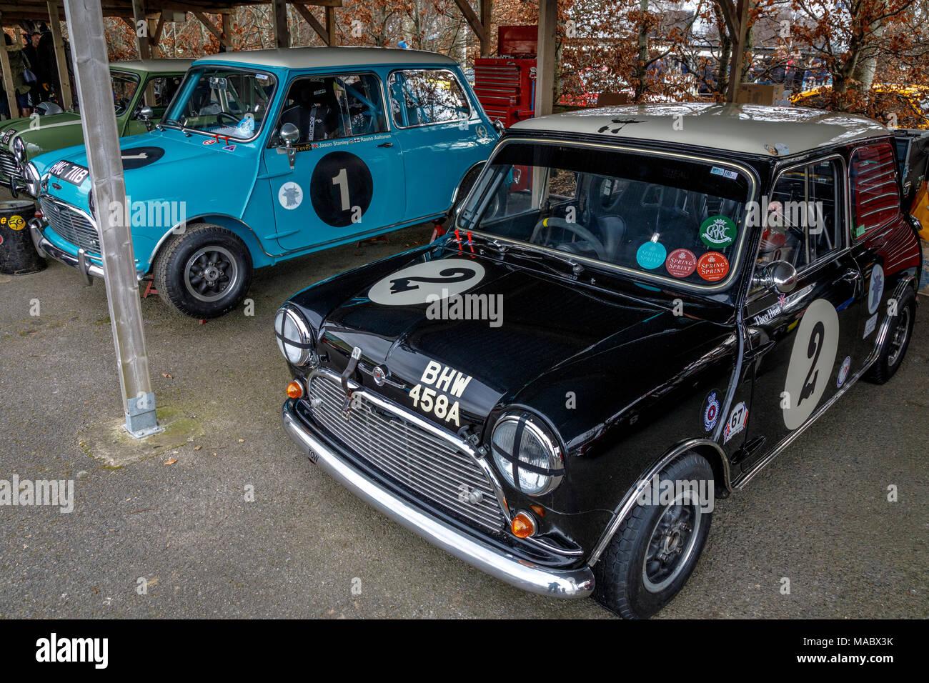 Zwei 1964 Austin Mini Cooper S Eintretende für Sears Trophy, im Fahrerlager am Goodwood 76th Mitgliederversammlung, Sussex, UK. Stockbild