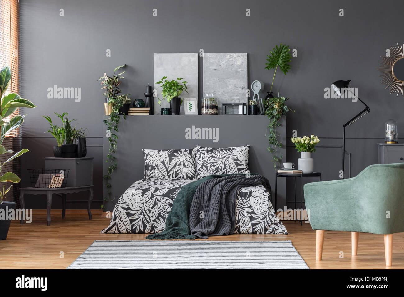 Frische grüne Pflanzen in Dunkelgrau Schlafzimmer Einrichtung mit modernen Gemälden, Dekor und Teppich platziert Stockbild
