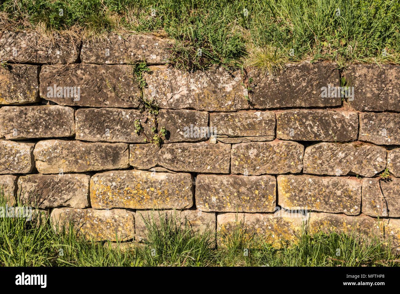 Steinmauer in der Mitte des Gartens Stockbild
