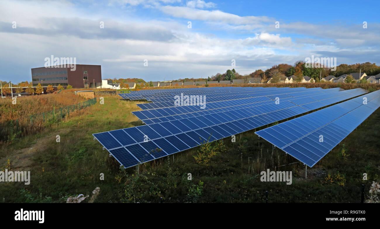 Laden Sie dieses Alamy Stockfoto Edinburgh College Eskbank Solar Wiese, Photovoltaik PV-Installation, Dalhousie Rd, Dalkeith, Edinburgh, Midlothian, Schottland, UK, EH22 3FR - R9GTK0