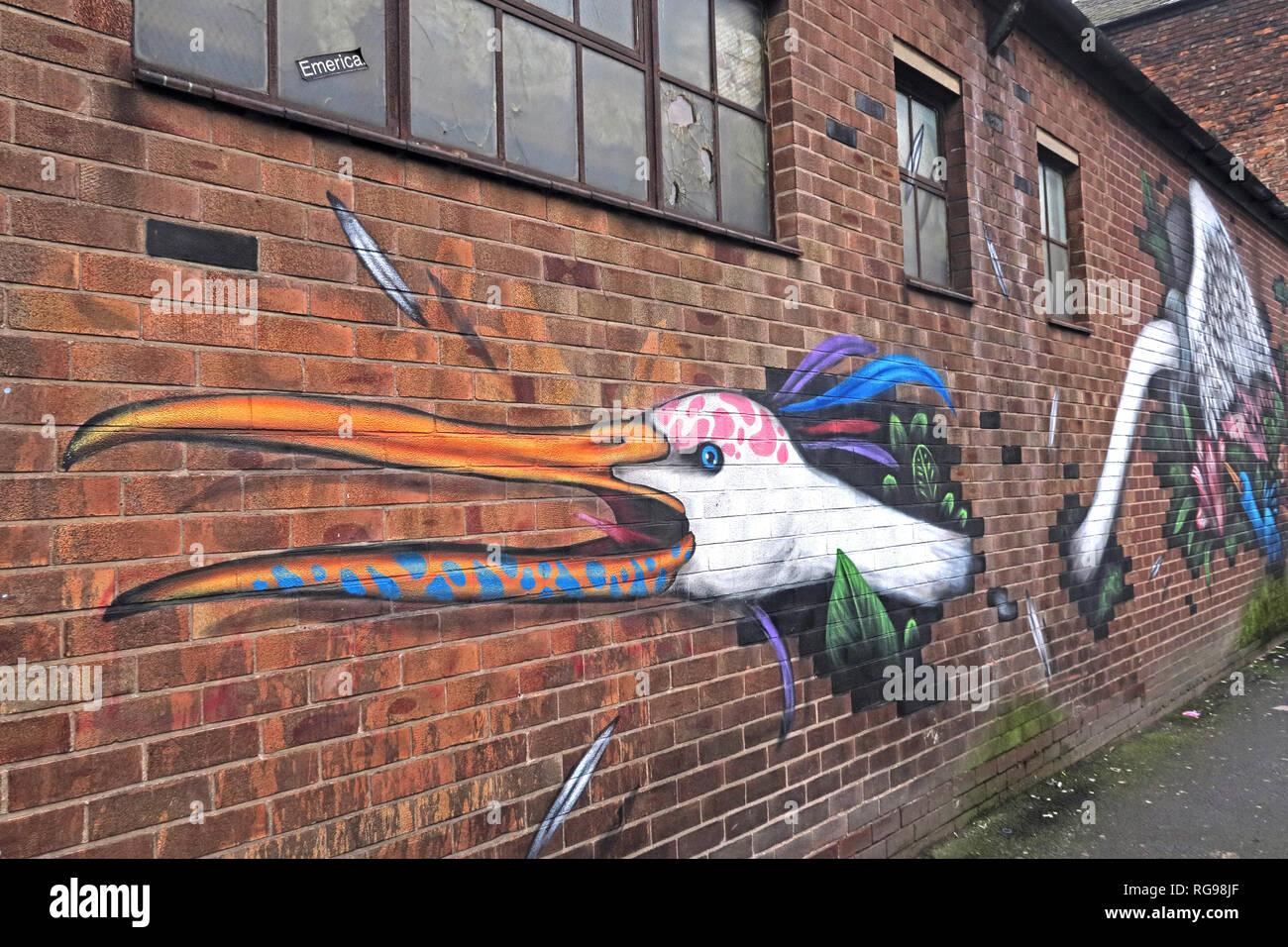 Laden Sie dieses Alamy Stockfoto Emerica Werk arbeitet, Vogel Kunst, Cross Keys St, Northern Quarter, Manchester, Stadtzentrum, North West England, UK, M 4 5 ET - RG98JF