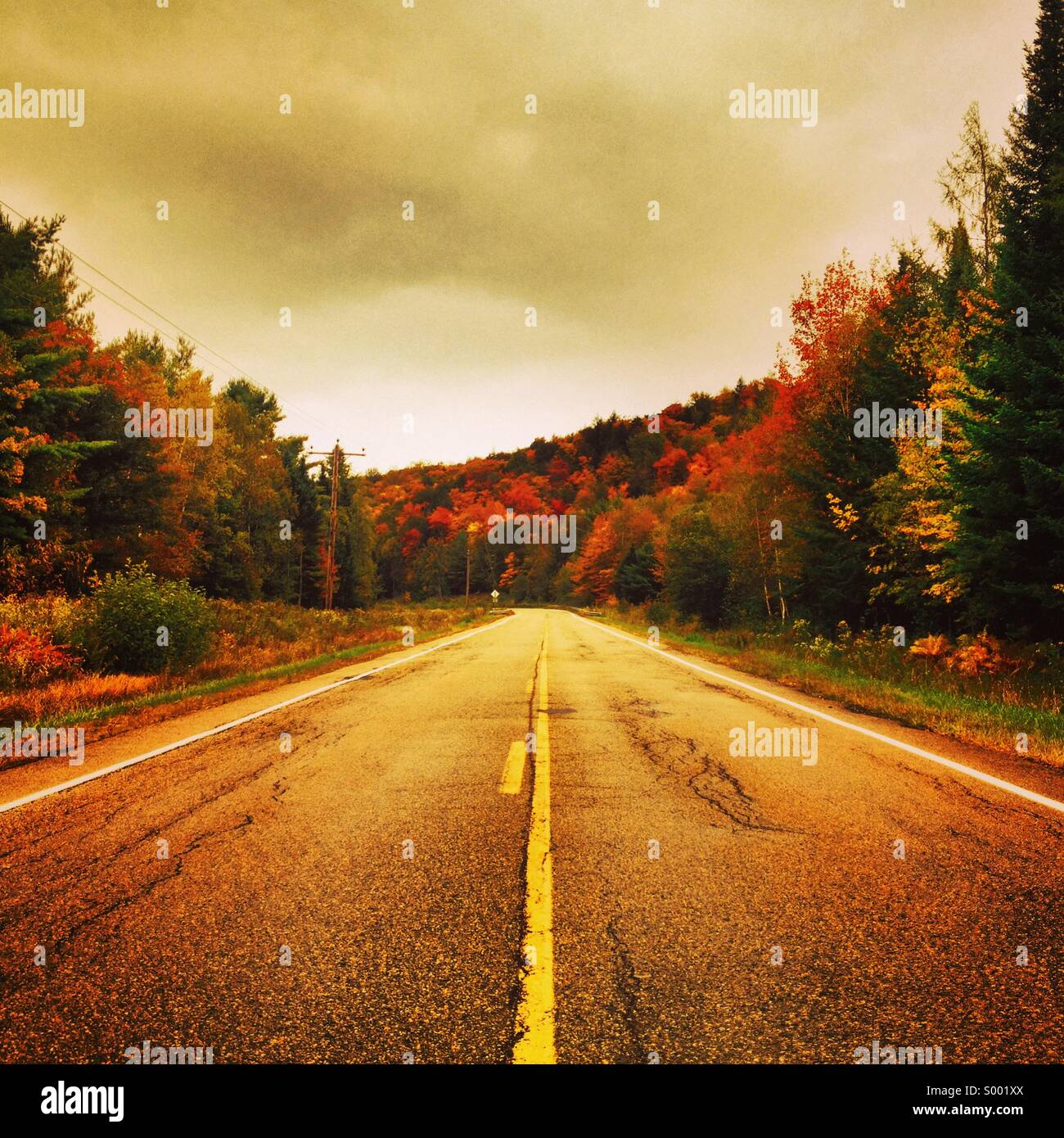 Einsame Straße, Maine, USA Stockbild