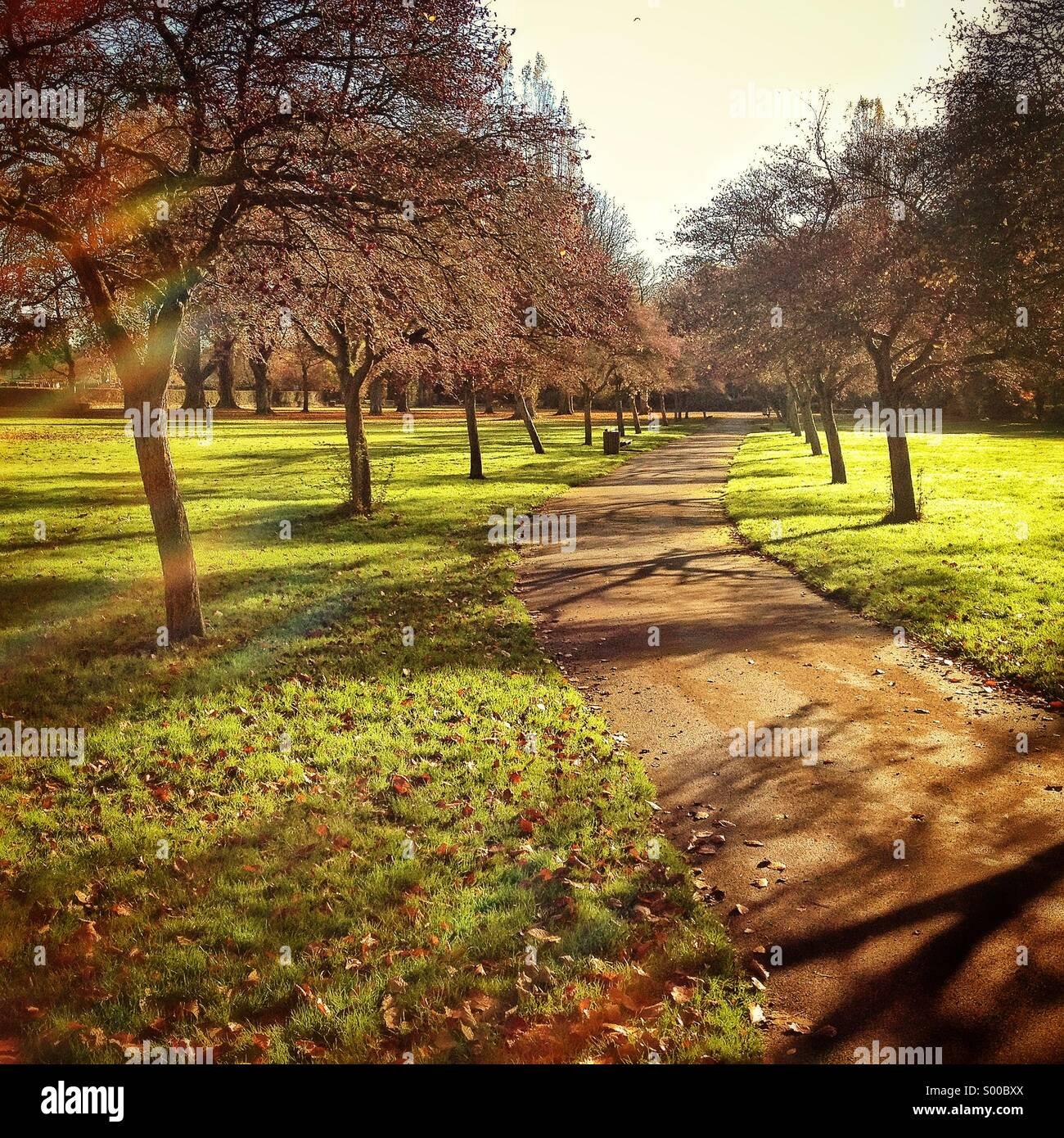 Weg durch Florenz Park In Oxford, UK Stockbild