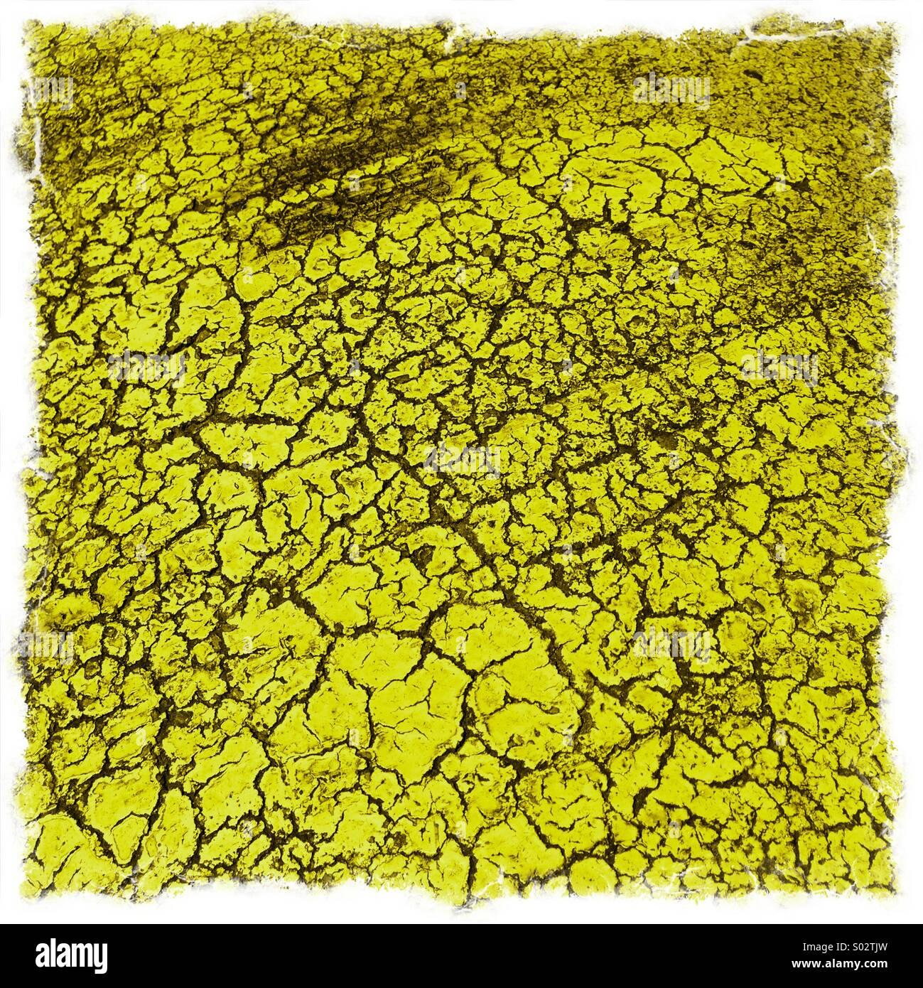 Pflaster-Farbe Stockbild