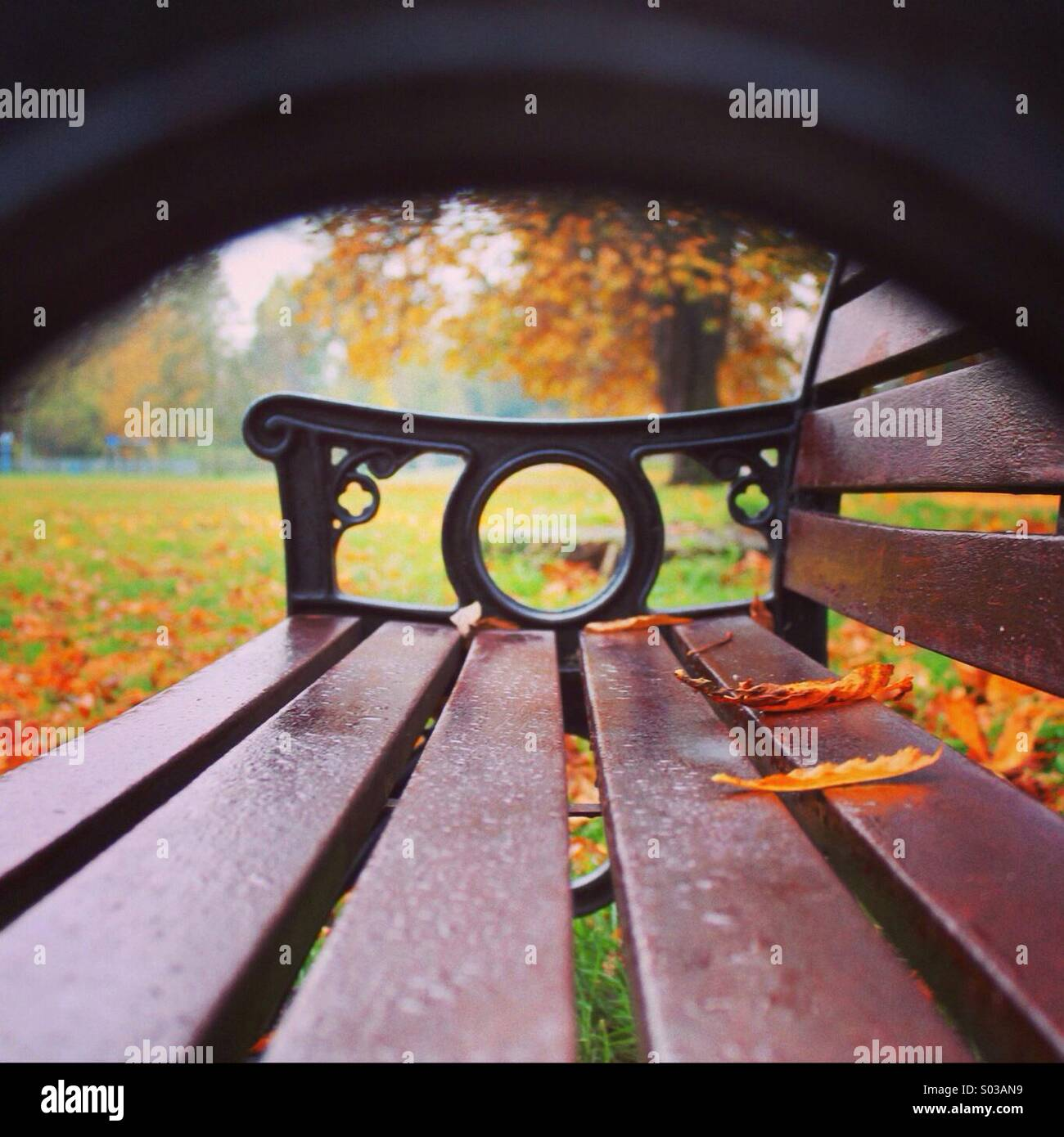 Einen Platz im park Stockbild