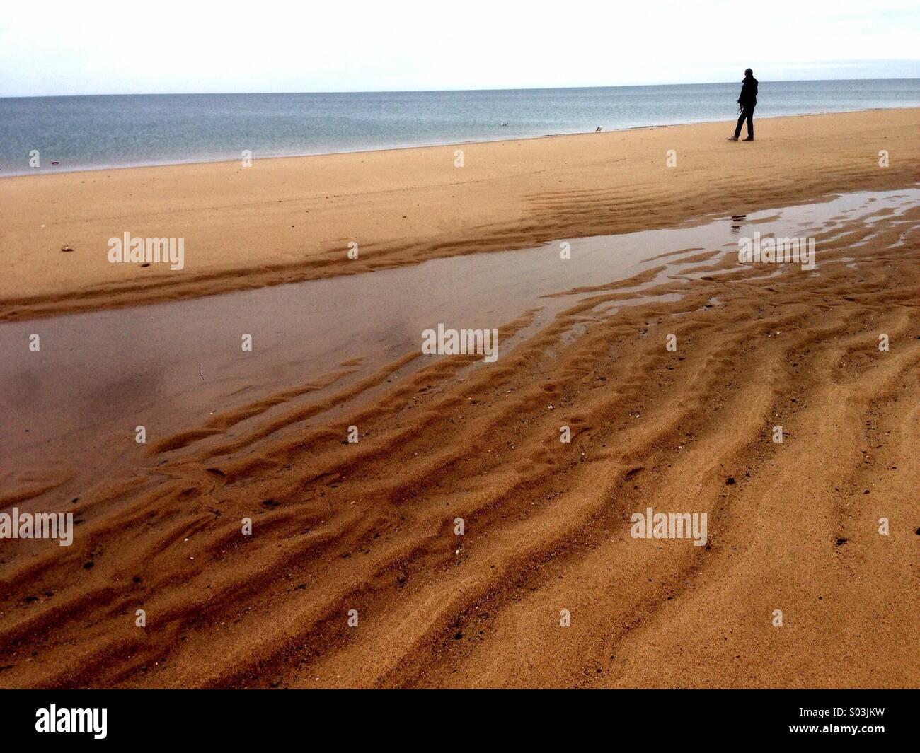 Fuß am Strand von Cape Cod. Stockbild