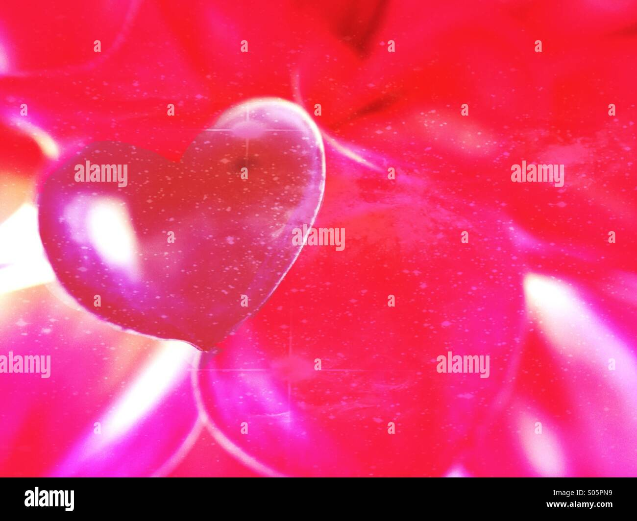 Nahaufnahme der Blüten in der Form eines Herzens Liebe Stockbild