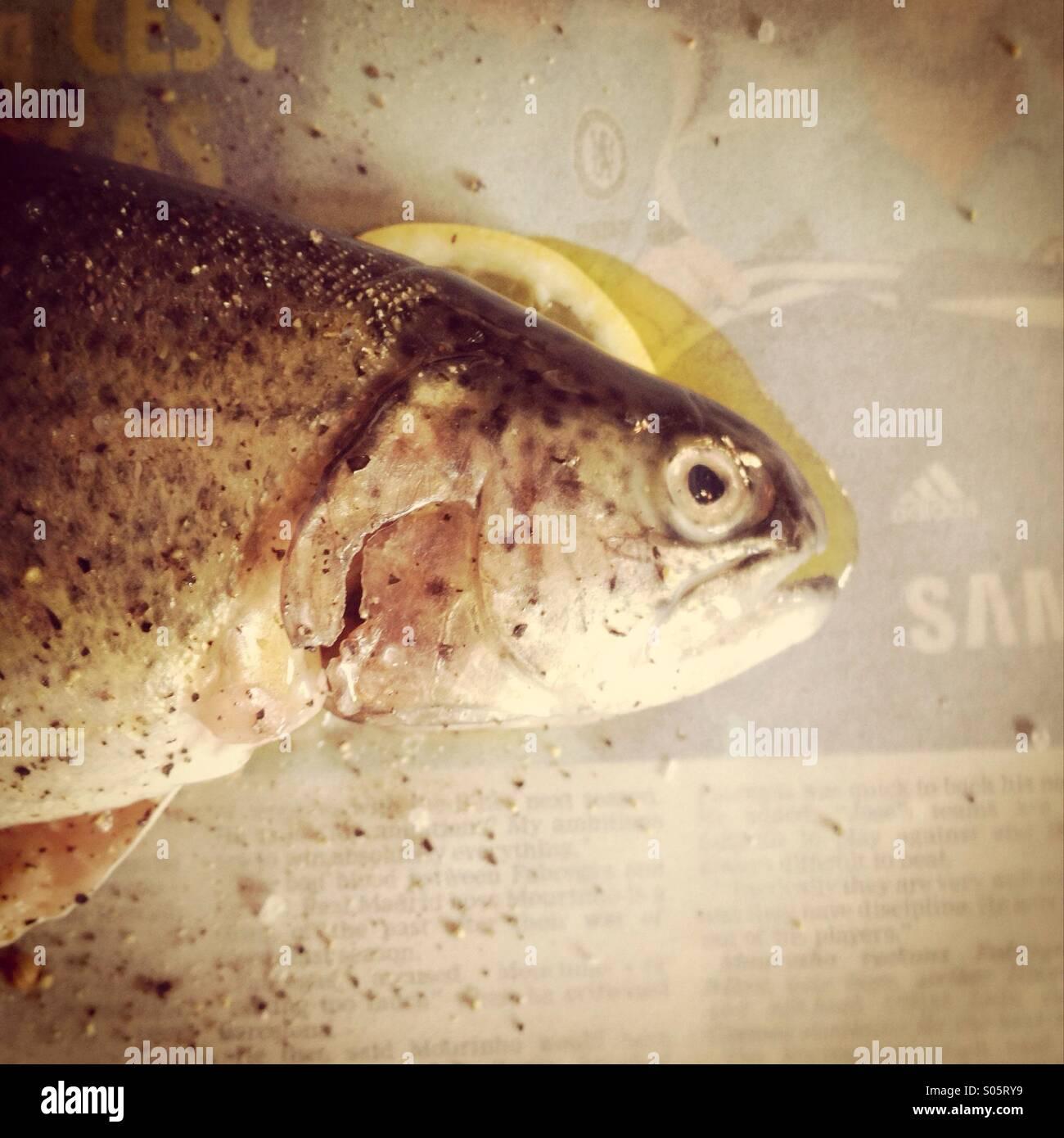 Zubereiteten Fisch. Saß auf einer Scheibe der Zitrone kochbereit Wolfsbarsch Stockbild