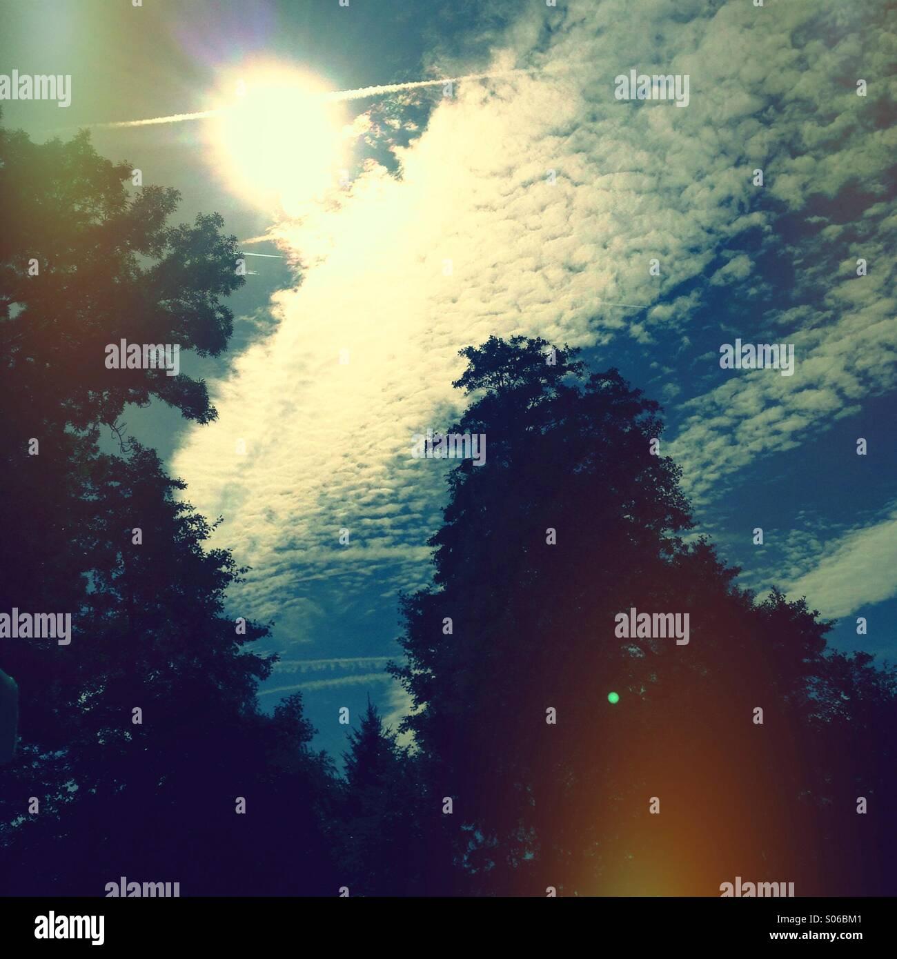 In Die Sonne Stockbild