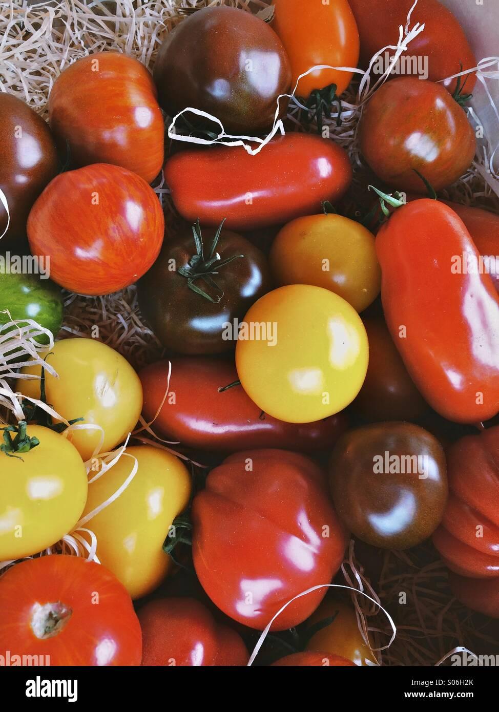 Andere Farbe Tomaten in einer Schale Stockbild