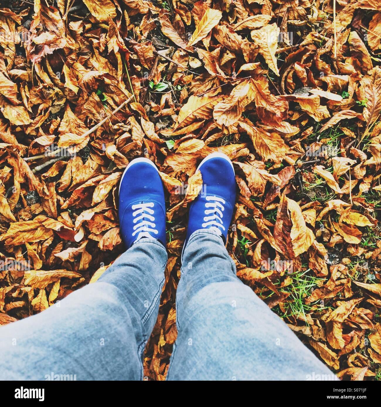 Zu Fuß Füße auf gefallenen Herbst Blätter Stockbild