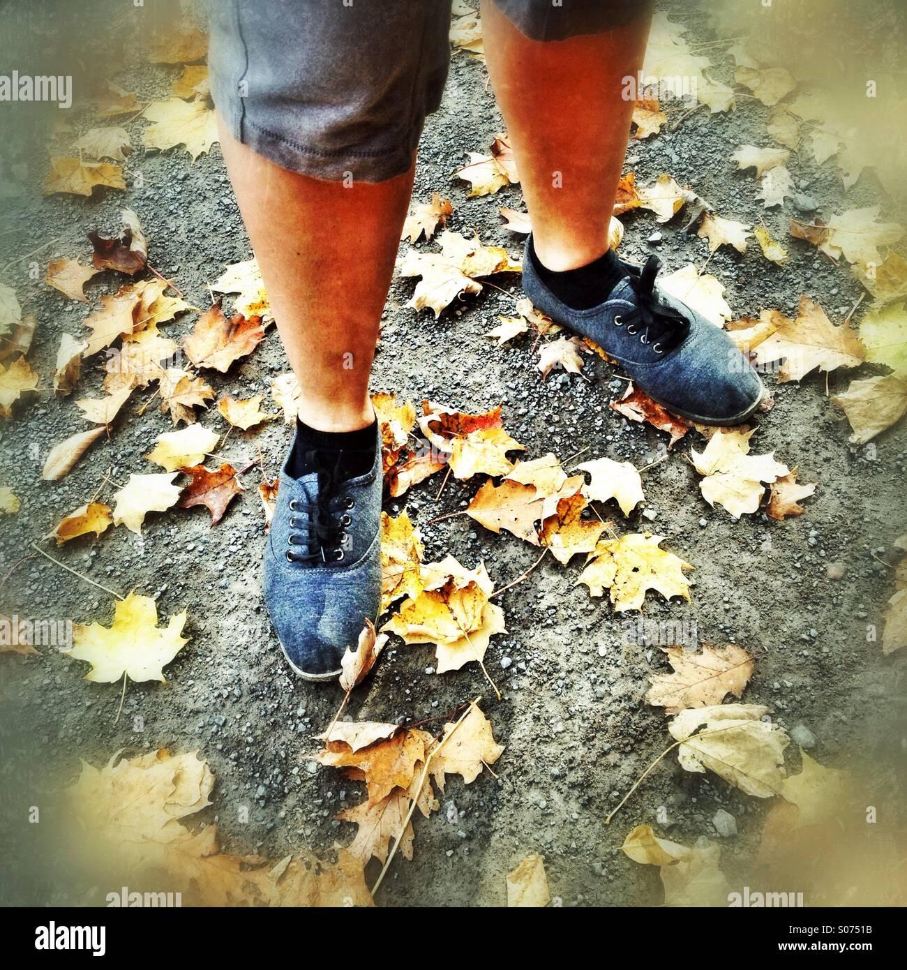 Herbst-Füße Stockbild