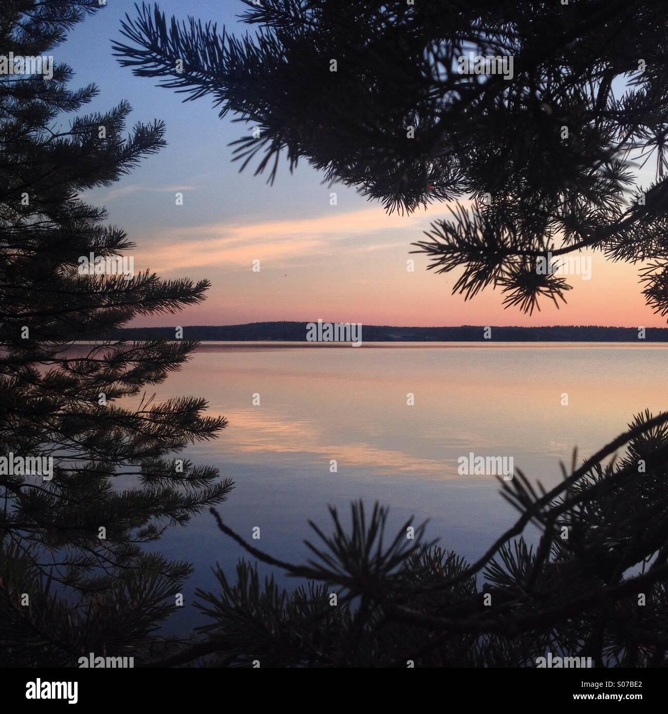 Mitternachtssonne in einem Wald bei einem nordischen Arktis See im Norden Finnlands im Sommer Stockbild