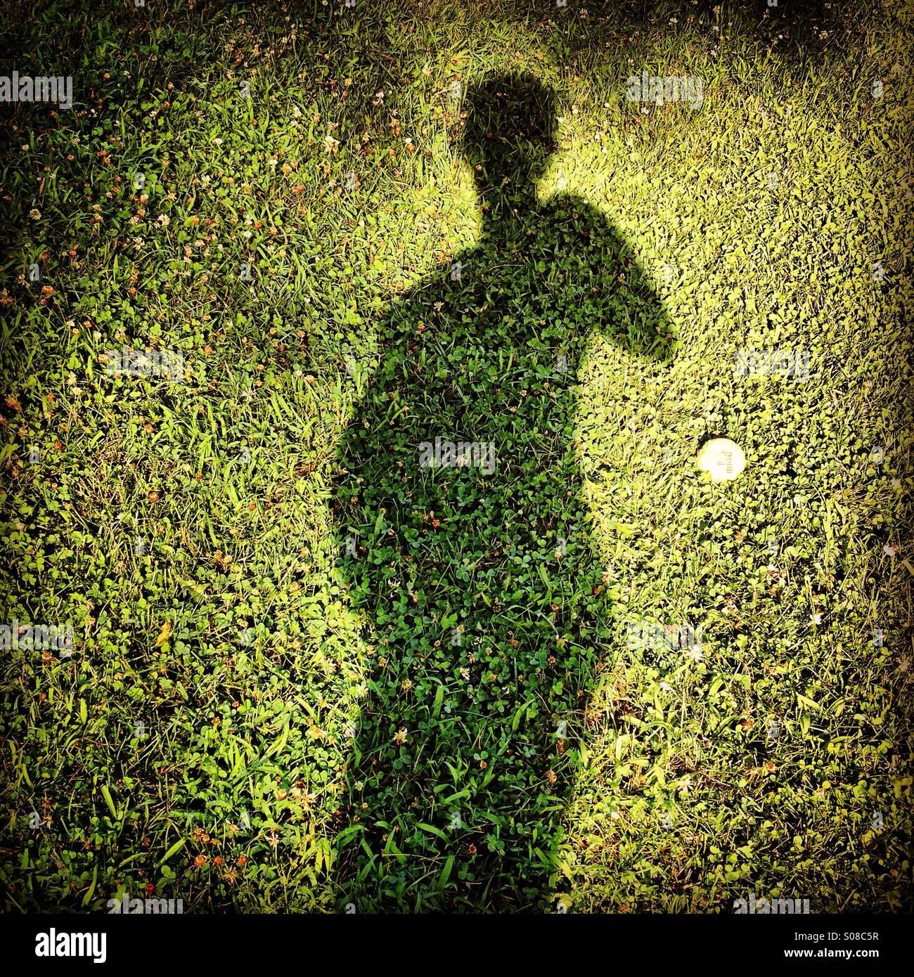 Schwanger Selfie Schatten Stockbild