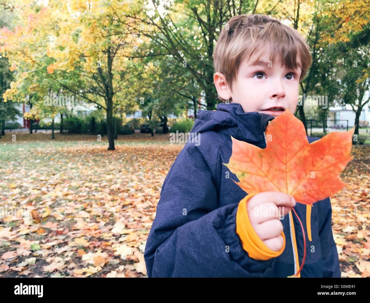 Kleiner Junge hält rot gefärbt Blatt im Herbst Stockbild