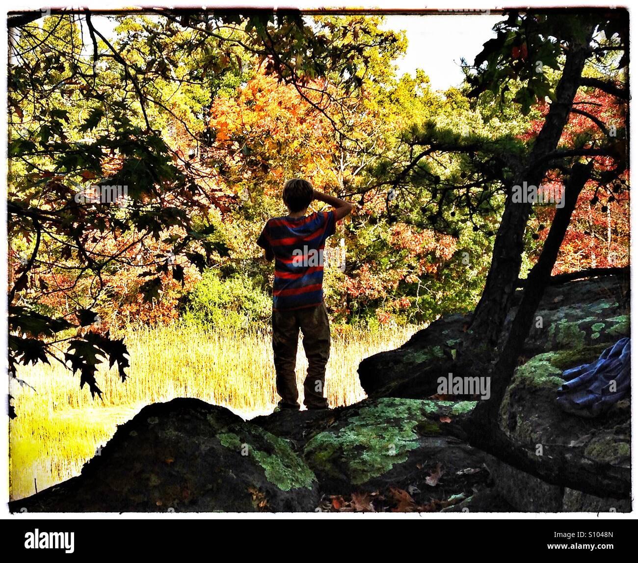 Teen junge blickt auf Herbst Landschaft. Herbstlaub, New England. CT, USA Stockbild