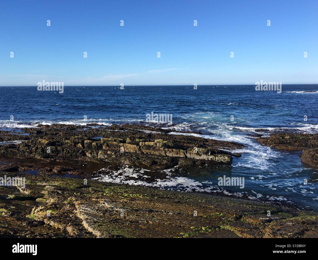 Ocean shore Stockbild