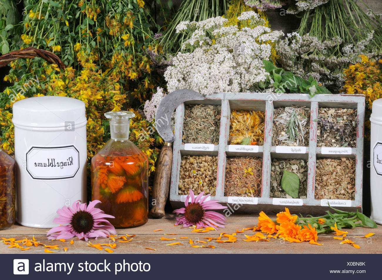 medicinal herbs stockfotos medicinal herbs bilder alamy. Black Bedroom Furniture Sets. Home Design Ideas