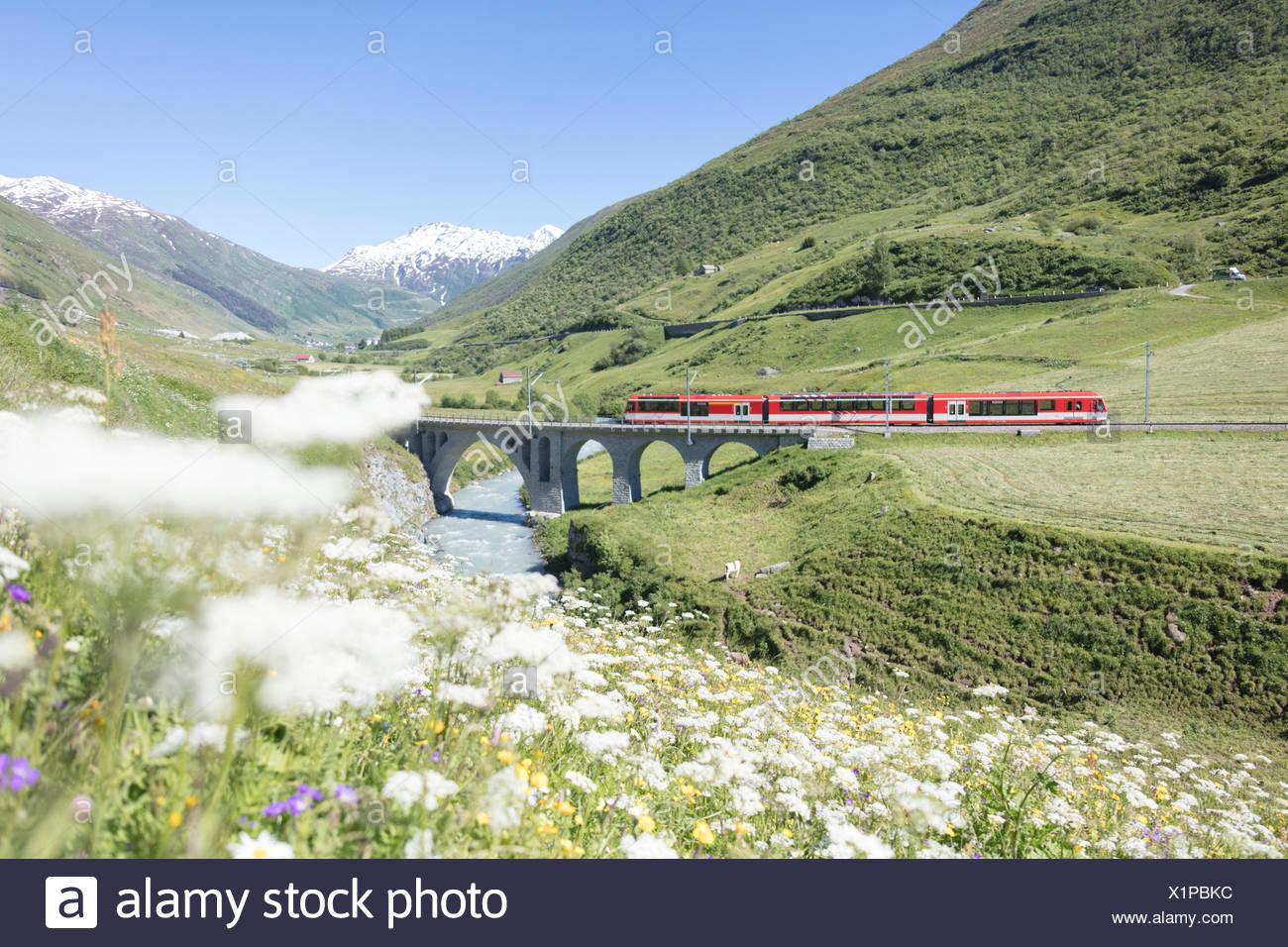 Typische rote Schweizer Schulen an Hospental Viadukt umgeben von Creek und blühenden Blumen Andermatt Kanton Uri-Schweiz-Europa Stockbild