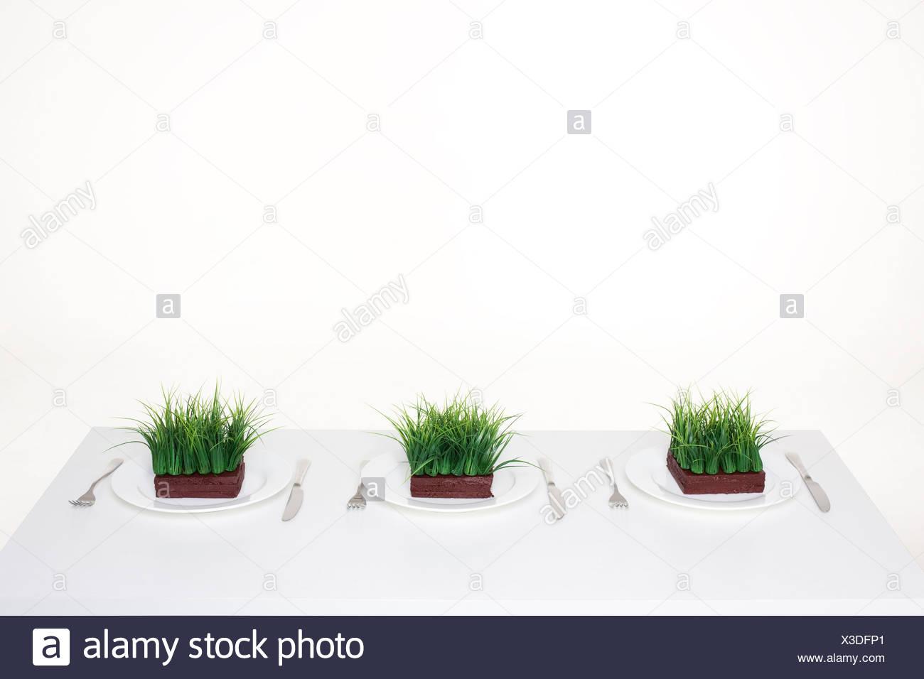 Gedecke mit Portionen Gras Stockbild