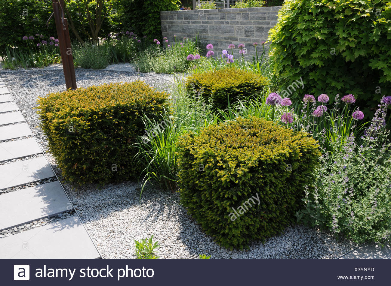 taxus topiary stockfotos taxus topiary bilder alamy. Black Bedroom Furniture Sets. Home Design Ideas