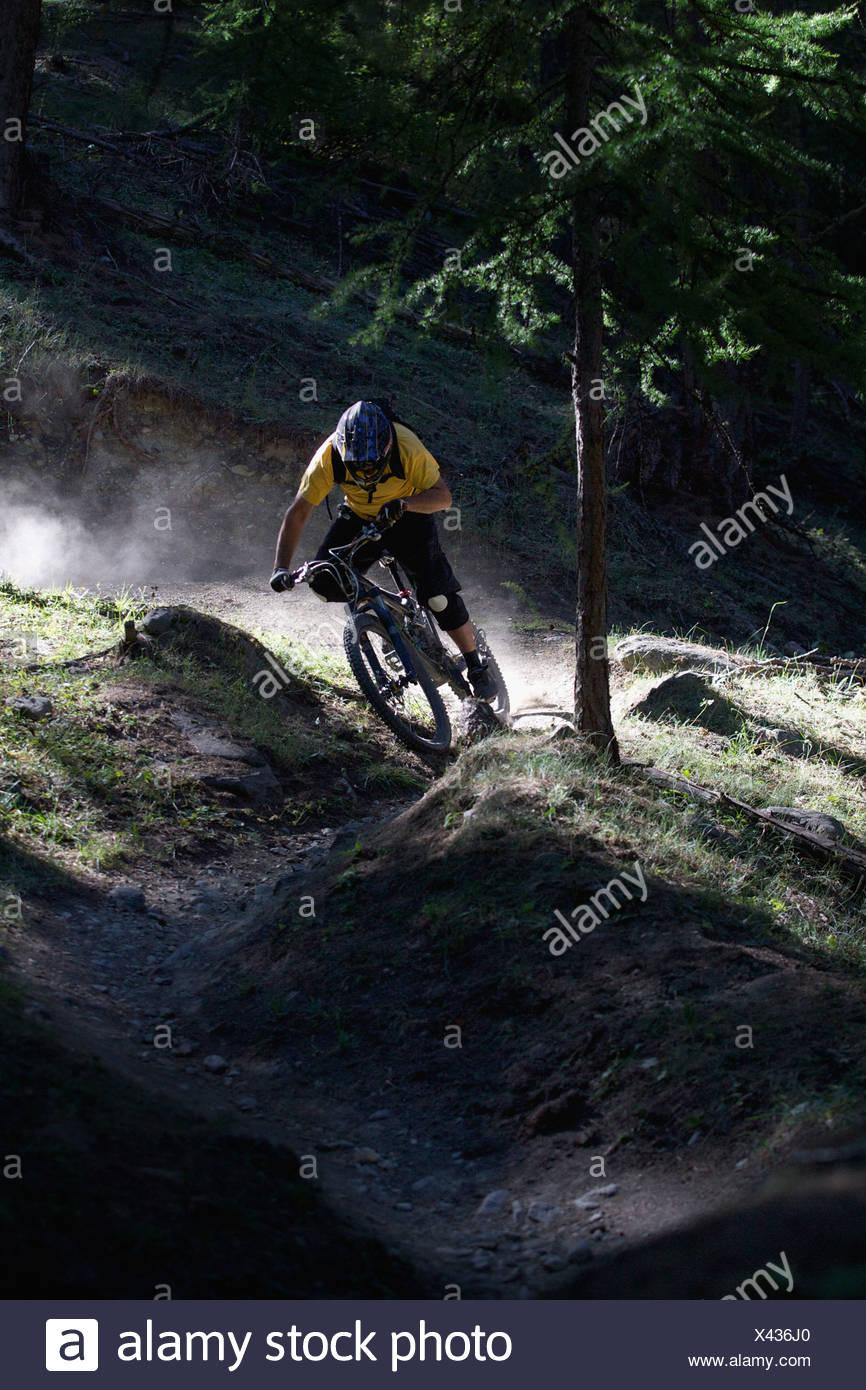 Mountainbiker auf Feldweg Stockbild