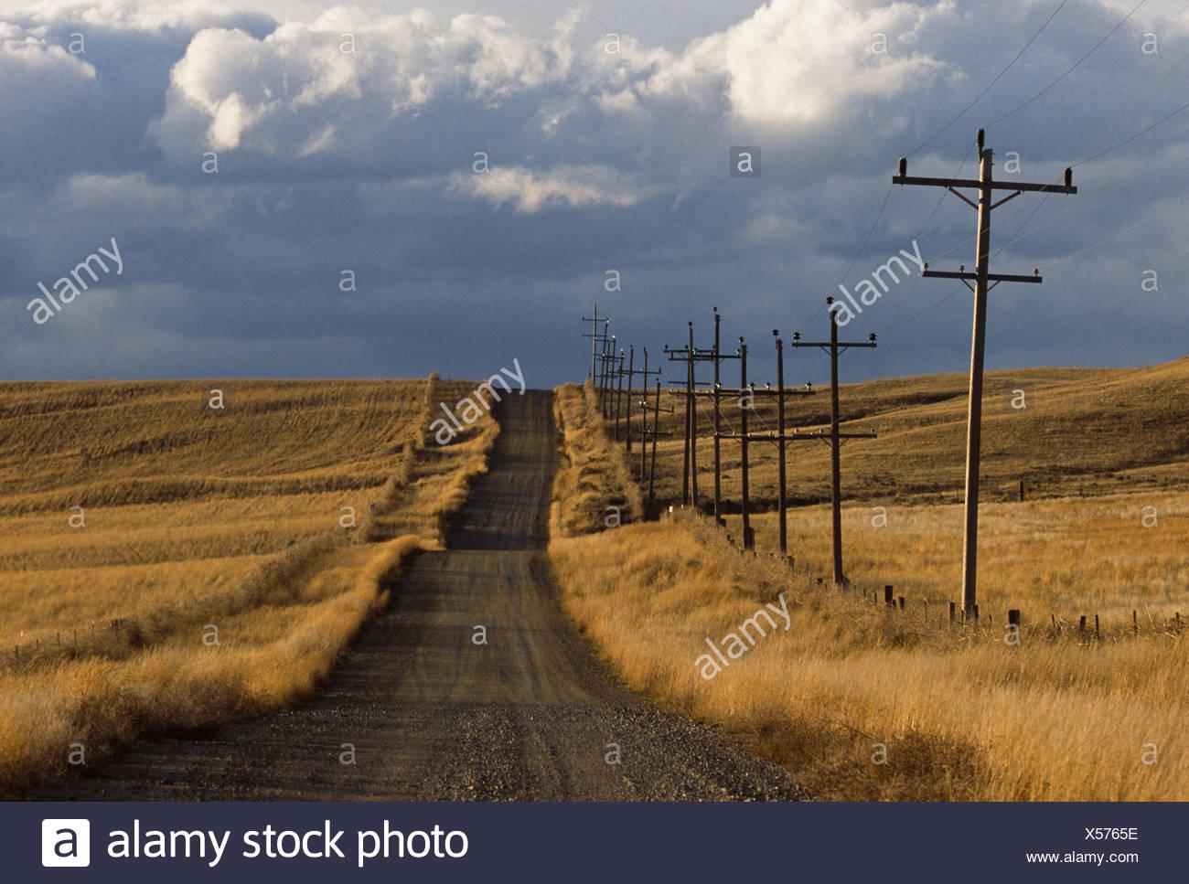Ländliche unbefestigte Straße, Montana Stockbild