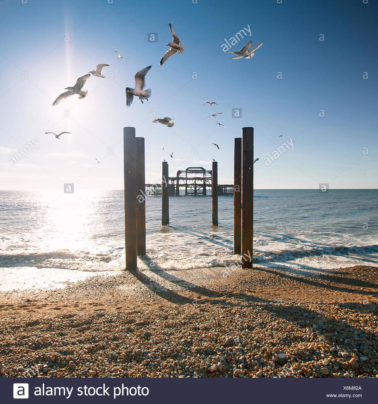 Brighton West Pier, East Sussex, England, UK Stockbild