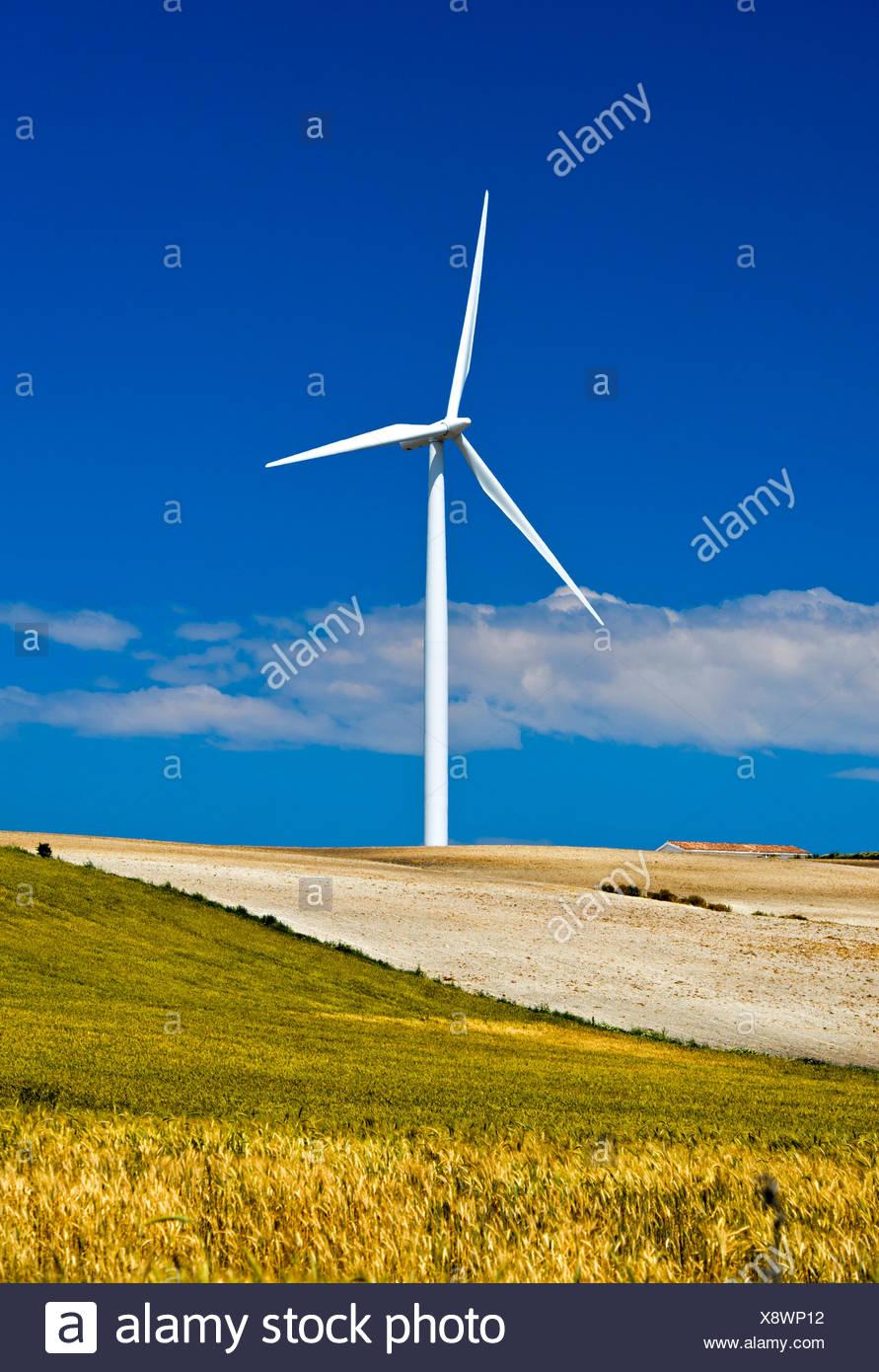 Windkraftanlage, Jerez De La Frontera, Andalusien, Spanien Stockbild