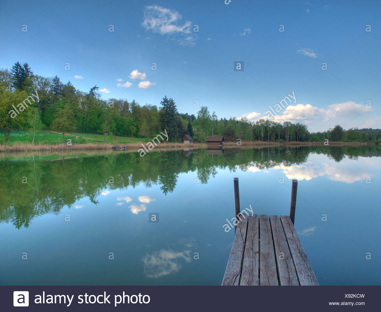 Blau, Feder, Himmel, Idylle, Steg, See, Holz, Wald, Wasser, Wolken, Kanton Zürich, Schweiz, Husemersee, See, Ossinge Stockbild