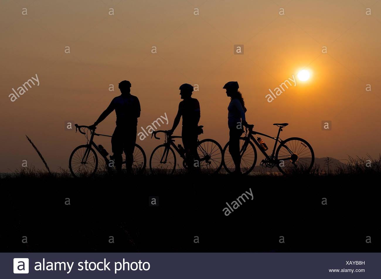 Silhouette der drei Radfahrer bei Sonnenuntergang Stockbild