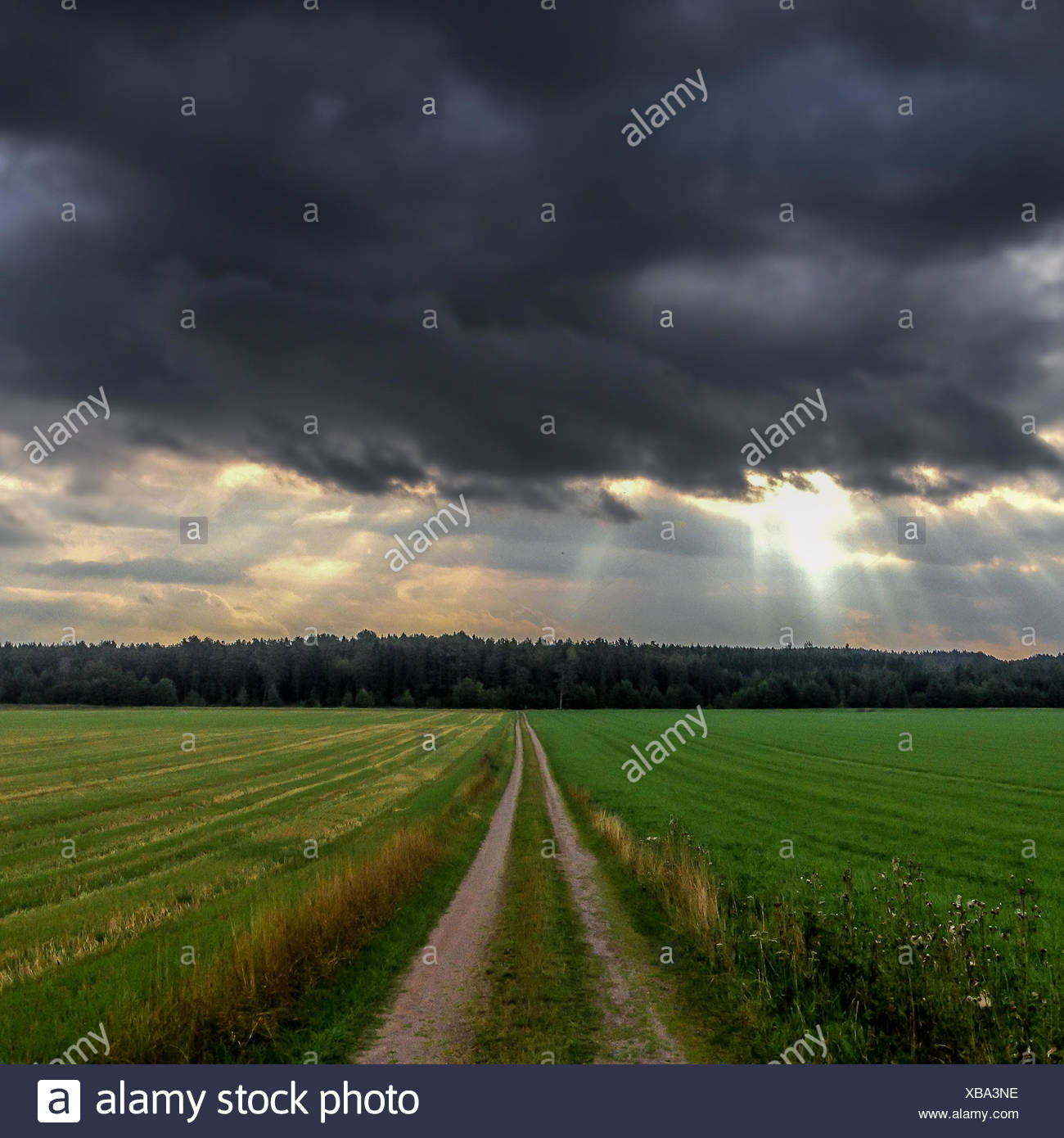 Landschaft mit stürmischen Wolken über Feld Stockbild