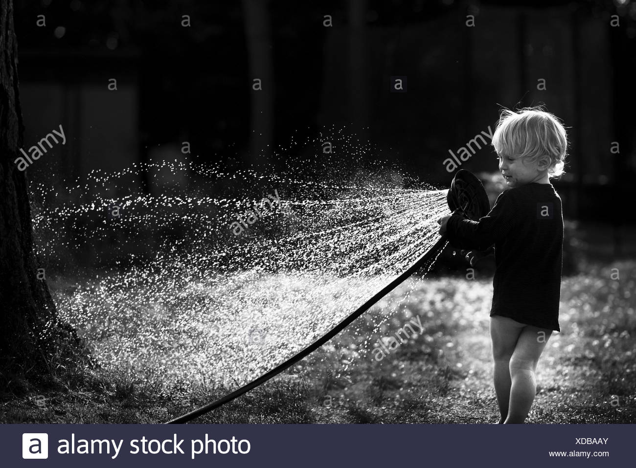 Kleiner Junge spielt mit einem Wasserschlauch im Garten, mit Hintergrundbeleuchtung, Berlin, Berlin, Deutschland Stockbild