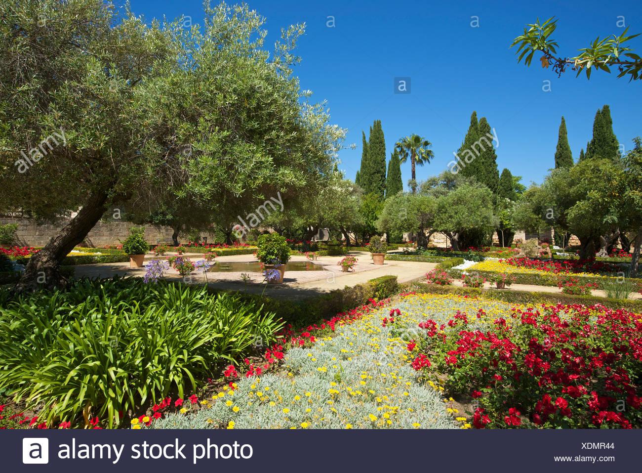 Andalusien, Spanien, Europa, draußen, Tag, Jerez De La Frontera, Costa De La Luz, niemand, Alcazar de Jerez, Garten, Gartenbau Stockbild