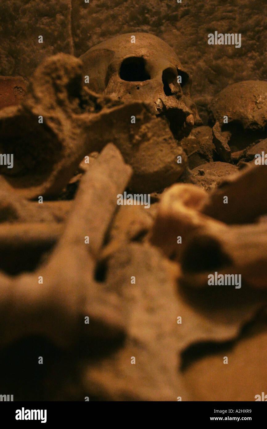 Montón de cráneo y huesos humanos reales, color Foto & Imagen De ...