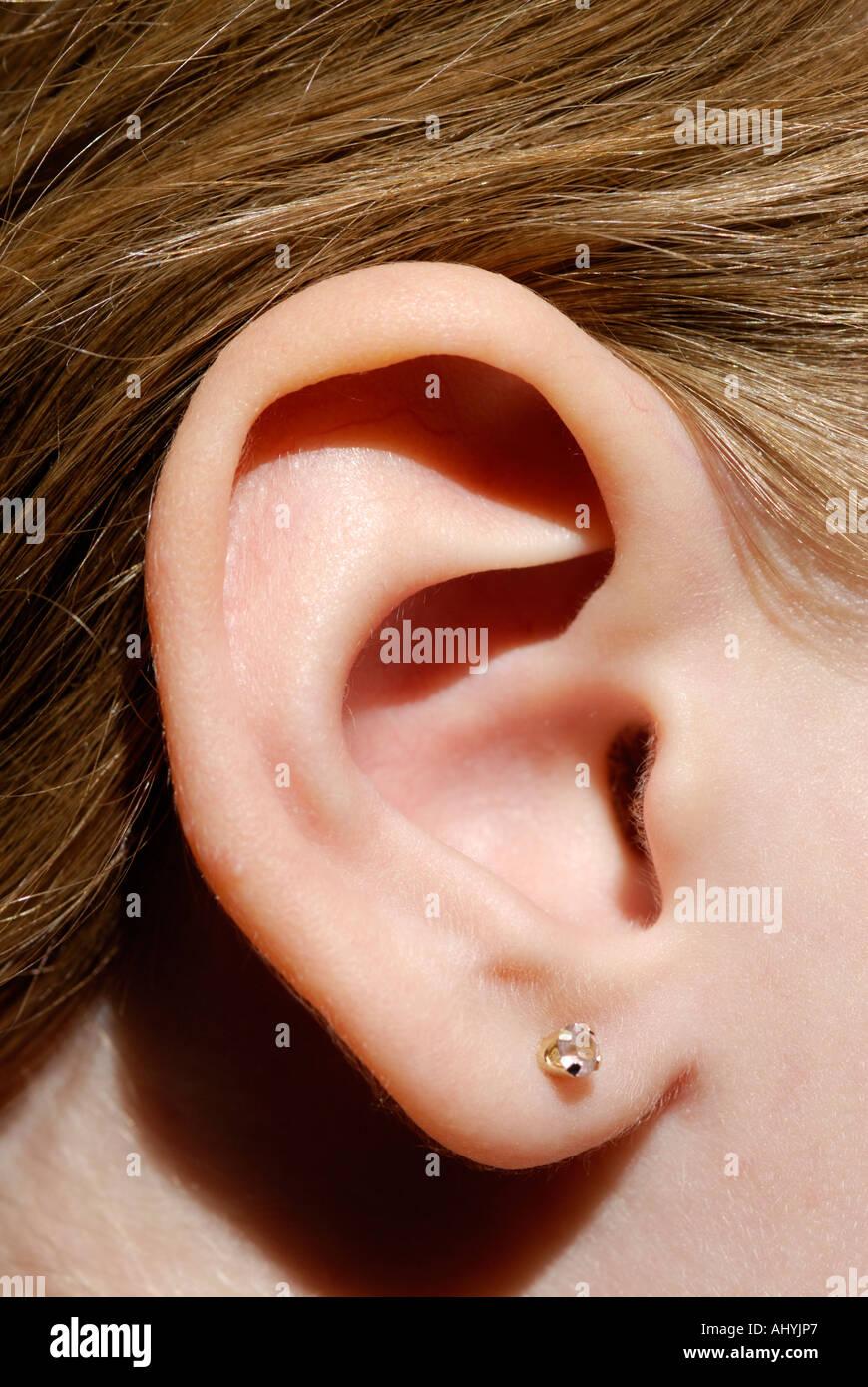 Cerca del oído humano. Oreja, pinna, lóbulos Foto & Imagen De Stock ...