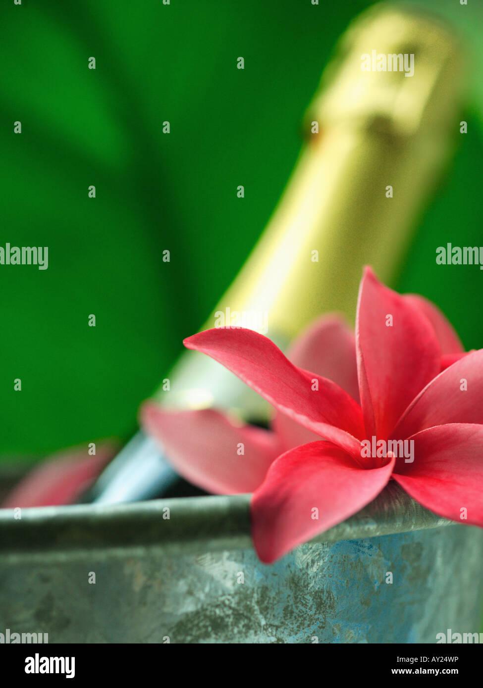 Vistoso Flor Diy Arte De Uñas Colección - Ideas Para Pintar Uñas ...