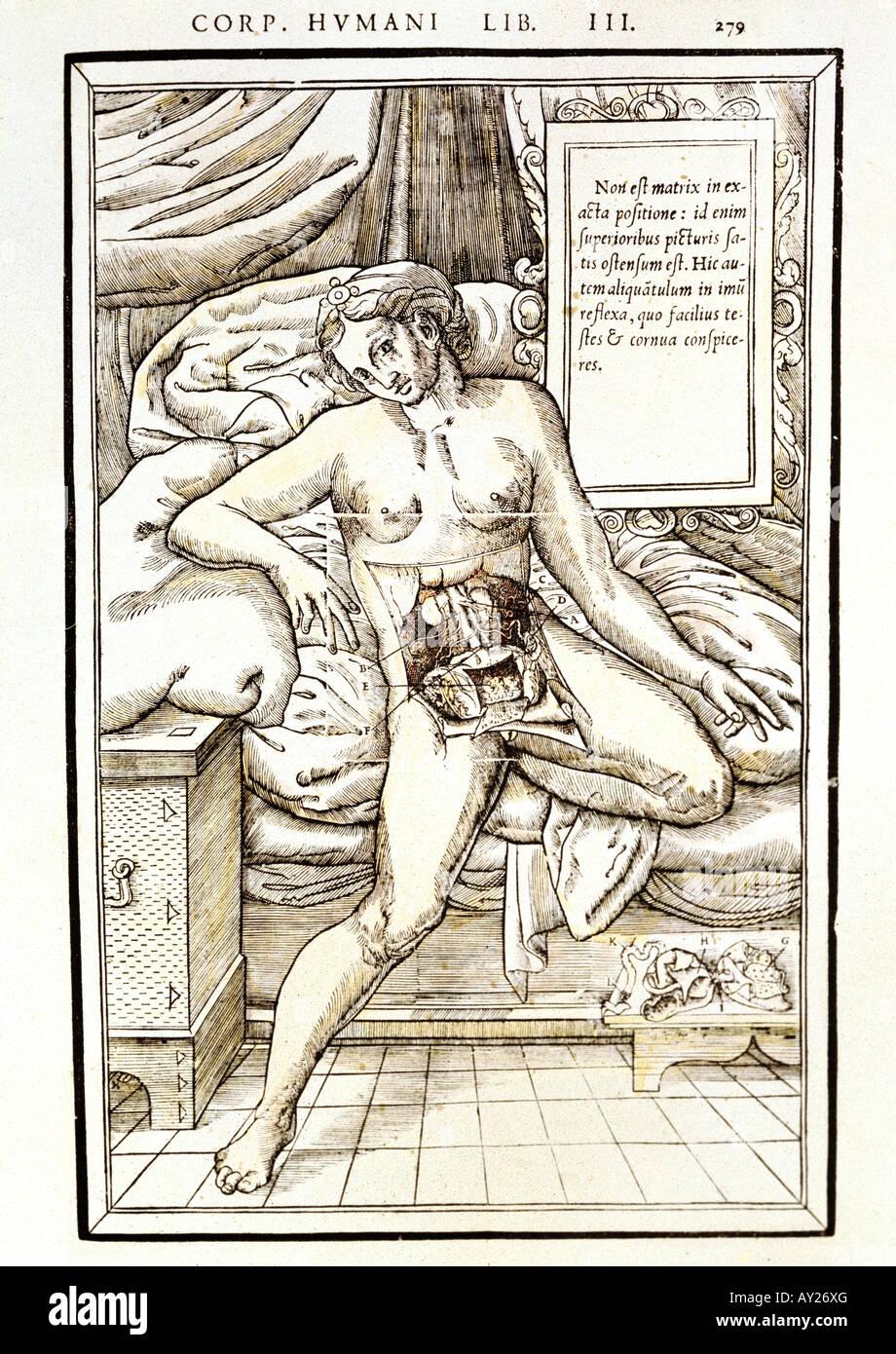 La medicina, la anatomía, la mujer con abdomen abierto, xilografía ...