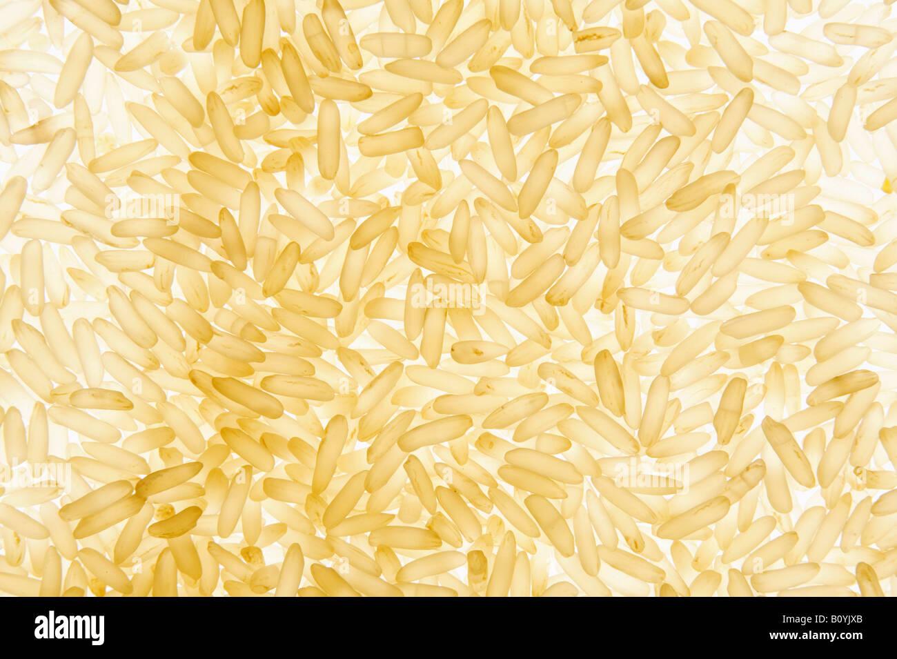 Arroz de grano largo (fotograma completo Foto & Imagen De Stock ...