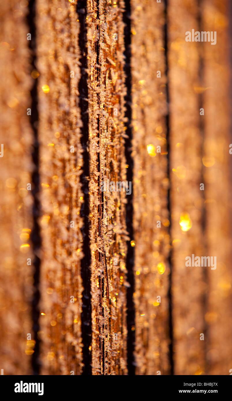 Placas de pared helada en el frío día de invierno Imagen De Stock