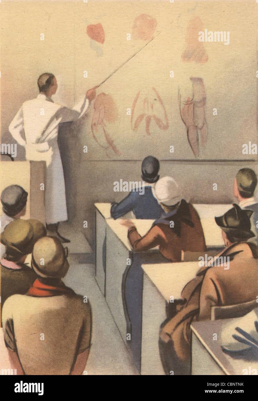 Clase de anatomía de la escuela italiana de medicina Foto & Imagen ...