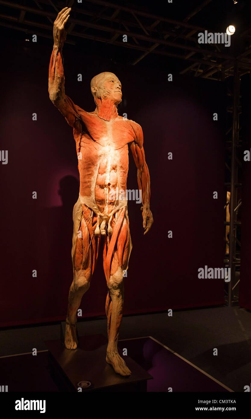 Italia Torino Palaisozaki la exposición La exposición del cuerpo ...
