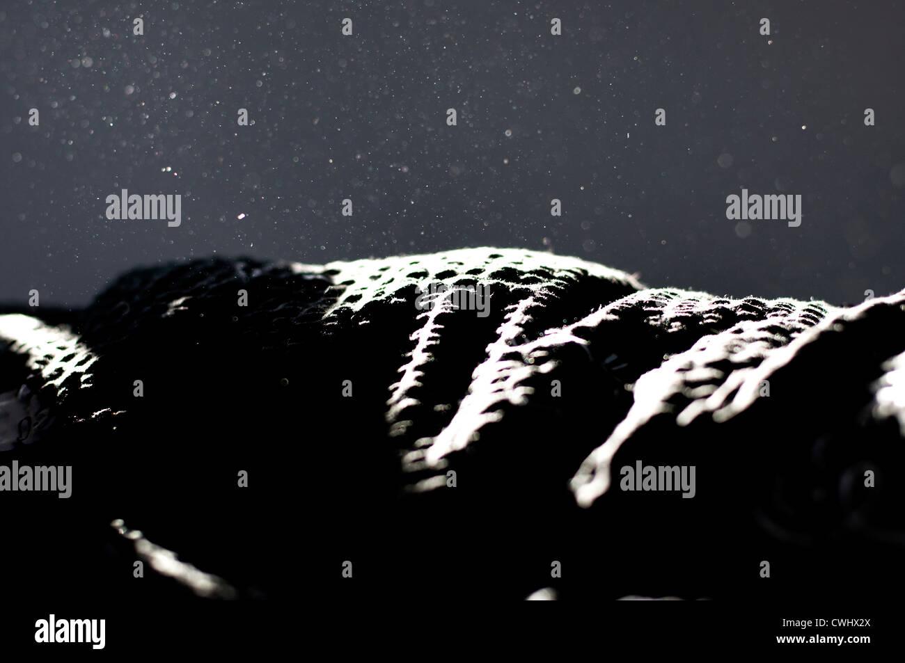 Manta de polvo de casa Imagen De Stock